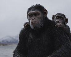"""""""La guerra del planeta de los simios"""" ya en cines"""